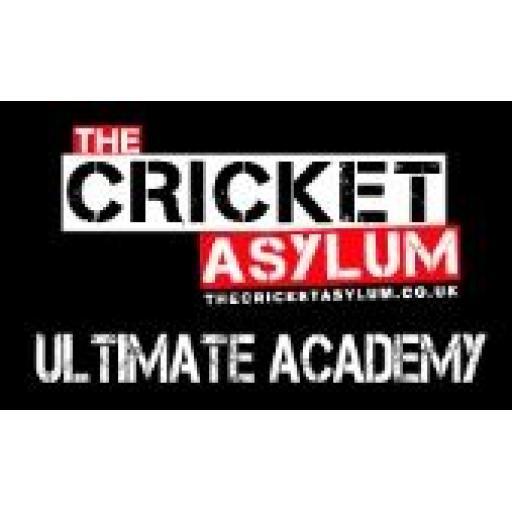 The Cricket Asylum - Ultimate Academy