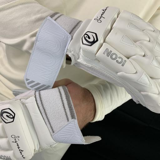 Signature gloves 4.jpg